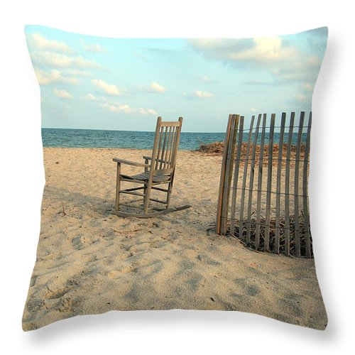 Beach Throw Pillow featuring the photograph Seagull by Skip Willits