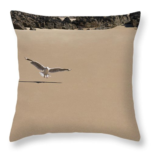 Animals Throw Pillow featuring the photograph Seagull Spreads Its Wings On The Beach by U Schade