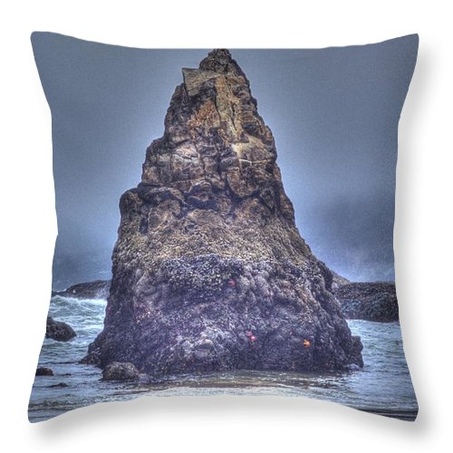 Ocean Throw Pillow featuring the photograph Seagull's Perch by One Rude Dawg Orcutt