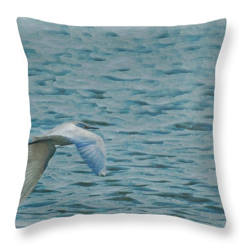 Birds Throw Pillow featuring the photograph Searching by Ernie Echols