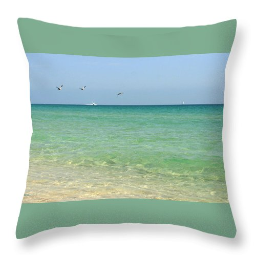 Ocean Throw Pillow featuring the photograph Seascape by Michelle Constantine
