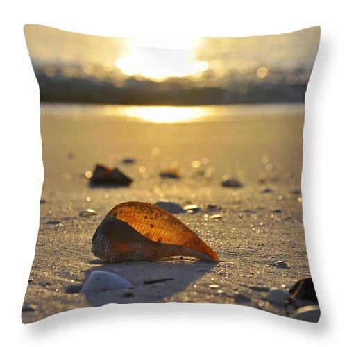 Sea Shell Throw Pillow featuring the photograph Seashells and Sunshine by Christine Stonebridge
