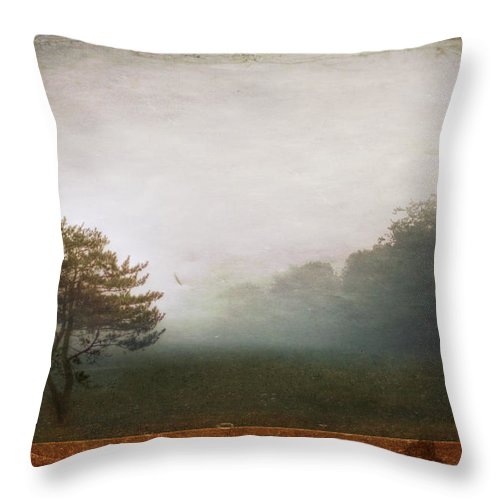 Tree Throw Pillow featuring the photograph Season Of Mists by Evelina Kremsdorf