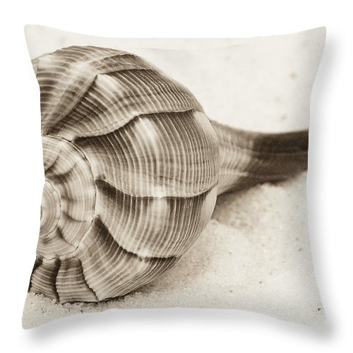 Shell Throw Pillow featuring the photograph Sepia Shell by Jim And Emily Bush