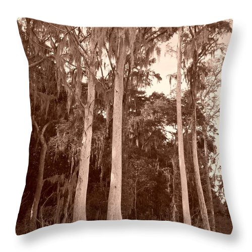 Trees Throw Pillow featuring the photograph Sepia Trees by Tiffney Heaning