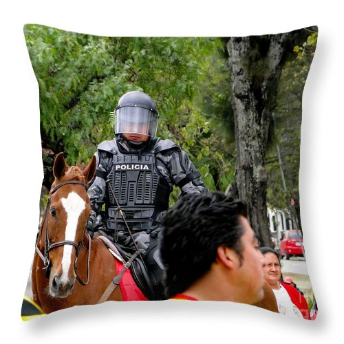 Al Bourassa Throw Pillow featuring the photograph Seriously Now by Al Bourassa