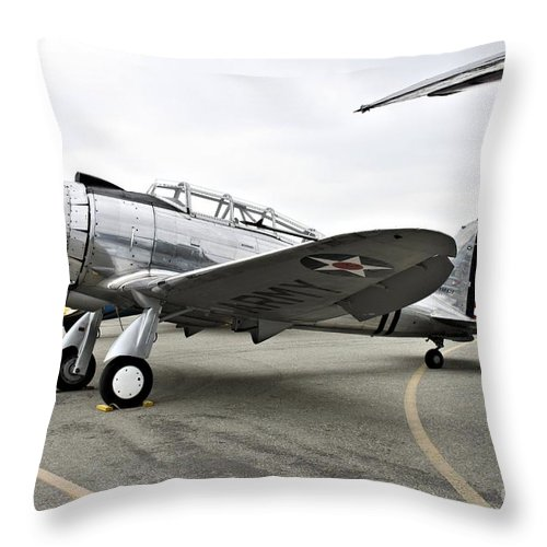 Seversky Throw Pillow featuring the photograph Seversky Guardsman At-12 by Tommy Anderson
