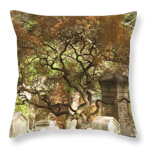 Graveyard Throw Pillow featuring the photograph Shade For The Weary by Michele Nelson
