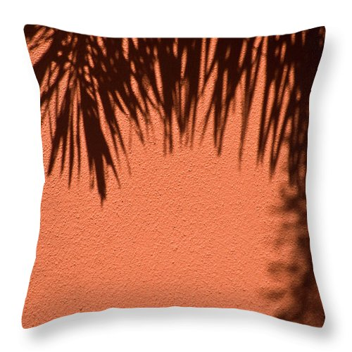 Palm Frond Throw Pillow featuring the photograph Shadows Of A Palm by Carolyn Marshall