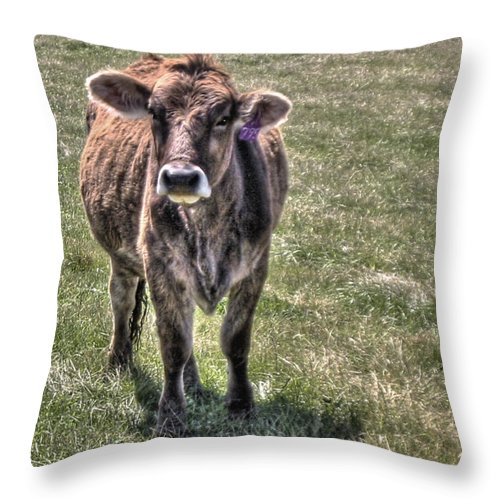 She Is A Spokesperson For Her Tribe Throw Pillow featuring the photograph She Is A Spokesperson For Her Tribe by William Fields