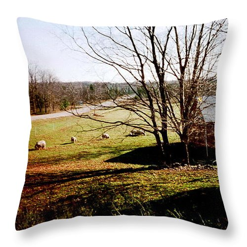 Sheep Throw Pillow featuring the photograph Sheep Farm by April Patterson