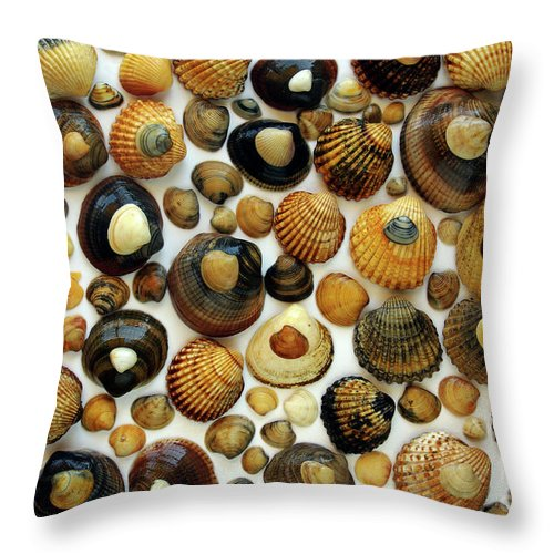 Aquatic Throw Pillow featuring the photograph Shell Background by Carlos Caetano