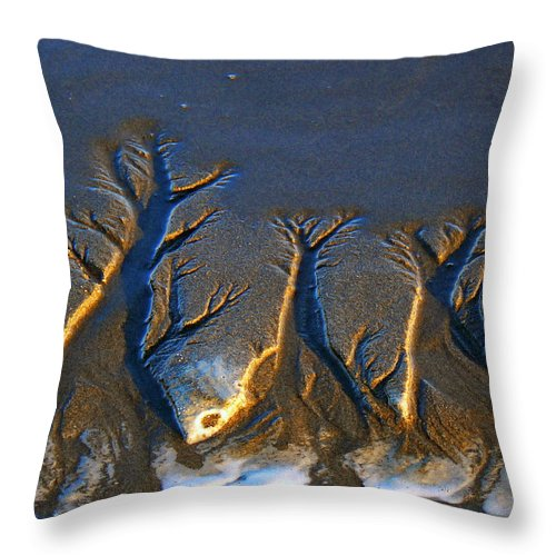 Beach Throw Pillow featuring the photograph Shifting Sands by Pamela Patch