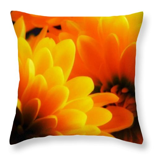 Flower Throw Pillow featuring the photograph Shine A Little Light On Me by Leah Moore
