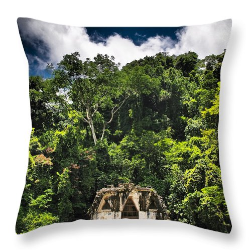 Shire Throw Pillow featuring the photograph Shire by Skip Hunt