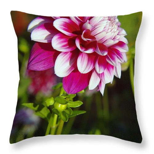 Flowers Throw Pillow featuring the photograph Sideview by Jeff Swan