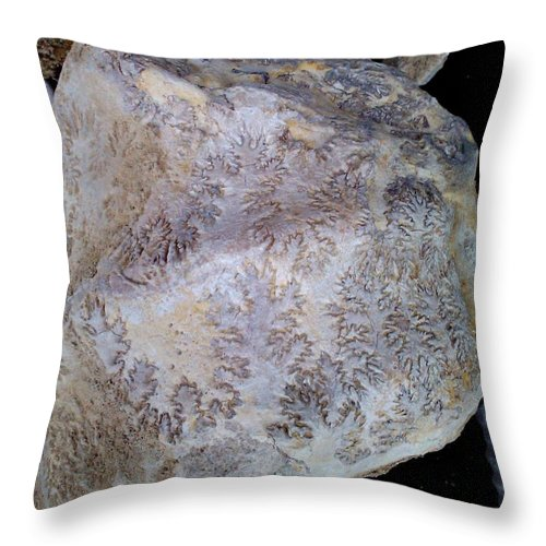 Ammonite Throw Pillow featuring the photograph Signs Of The Ancient Seamstress by Meandering Photography