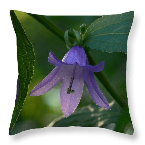 Wildflowers Throw Pillow featuring the photograph Silent Bells by Natalie LaRocque