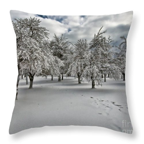 Snow Throw Pillow featuring the photograph Silent Winter by Phil Pantano
