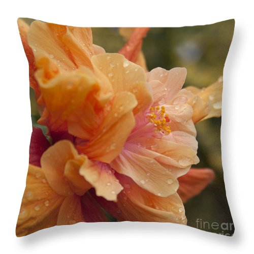 Aloha Throw Pillow featuring the photograph Silenzio Del Momento by Sharon Mau