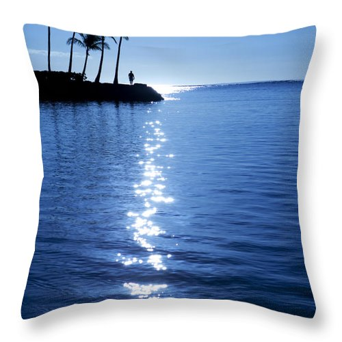 Beach Throw Pillow featuring the photograph Silhouetted Plams IIi by Dana Edmunds - Printscapes