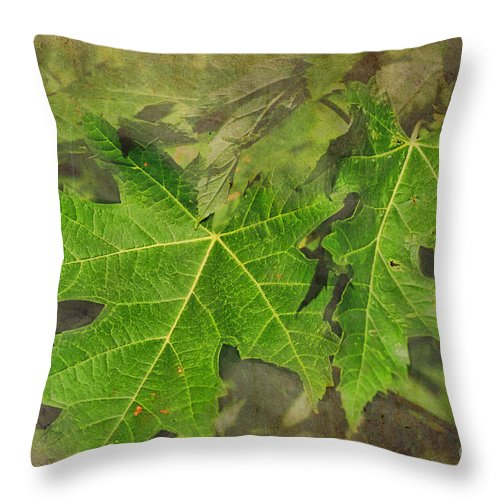 Nature Throw Pillow featuring the photograph Simply Summer Maple Leaves by Debbie Portwood