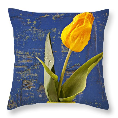 Yellow Throw Pillow featuring the photograph Single Yellow Tulip In Yellow Vase by Garry Gay