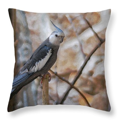 Cockatiels Throw Pillow featuring the photograph Sitting Pretty by Ernie Echols