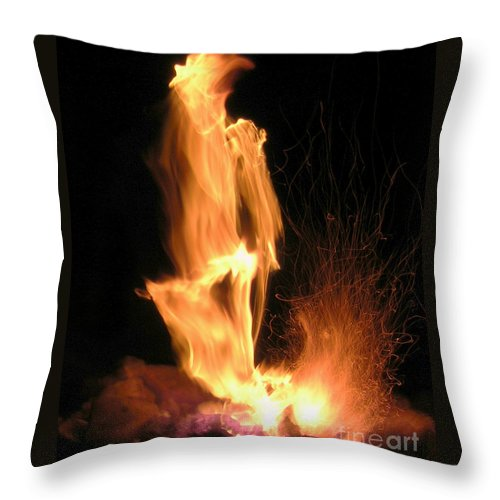 Fire Throw Pillow featuring the photograph Skeletor by Anthony Wilkening