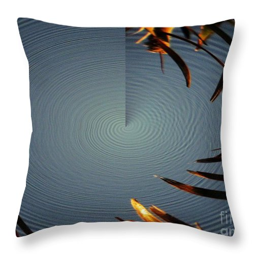 Ripple Throw Pillow featuring the photograph Skimmer Ripple Abstract by Rrrose Pix