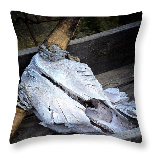 Skull Throw Pillow featuring the photograph Skullduggery by Diane Wood