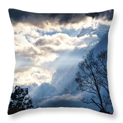 Trees Throw Pillow featuring the photograph Sky by Sheri Bartoszek