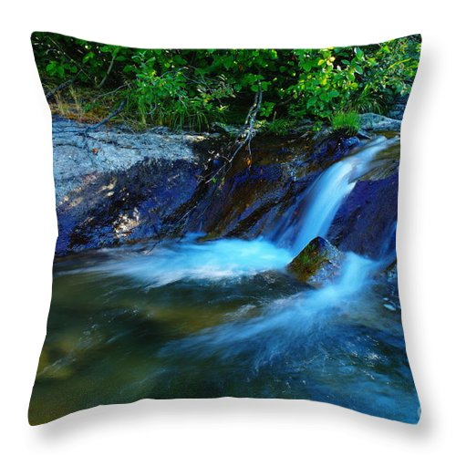 Water Throw Pillow featuring the photograph Small Blue Water by Jeff Swan