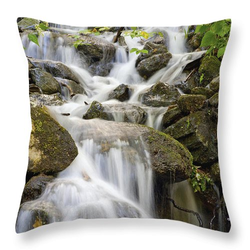 Blur Throw Pillow featuring the photograph Small Waterfalls And Brook West Bolton by David Chapman