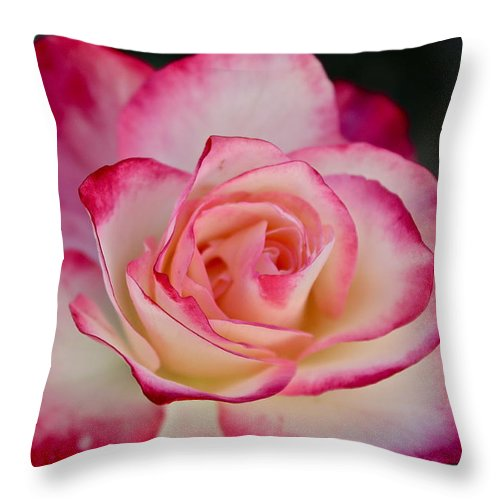 Flowers Throw Pillow featuring the photograph Smell The Roses by Diana Hatcher