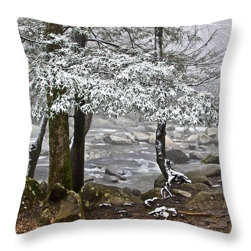 Landscape Throw Pillow featuring the photograph Smoky Mountain Stream by Tom and Pat Cory