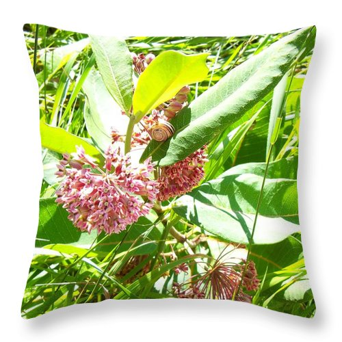 Nature Throw Pillow featuring the photograph Snail On Leaf by Corinne Elizabeth Cowherd