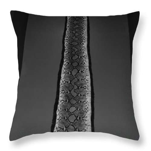 Animal Throw Pillow featuring the photograph Snake Skin In Black And White by Rob Hans