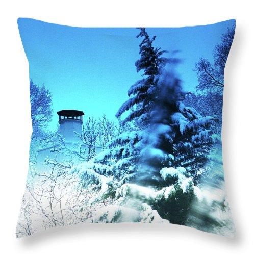 Snow Throw Pillow featuring the digital art Snow Bow by Lizi Beard-Ward