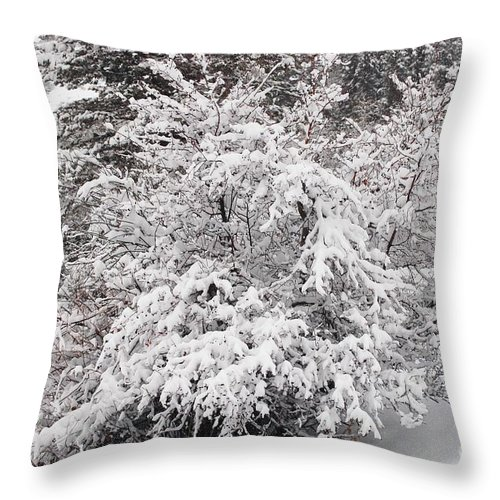 Snow Throw Pillow featuring the photograph Snow Bush by Lucy Bounds