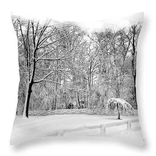 2d Throw Pillow featuring the photograph Snow Covered by Brian Wallace