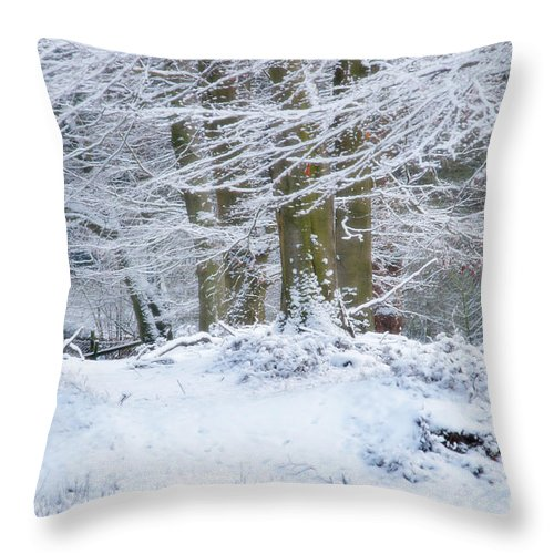 Snow Throw Pillow featuring the photograph Snow Magic by Ann Garrett