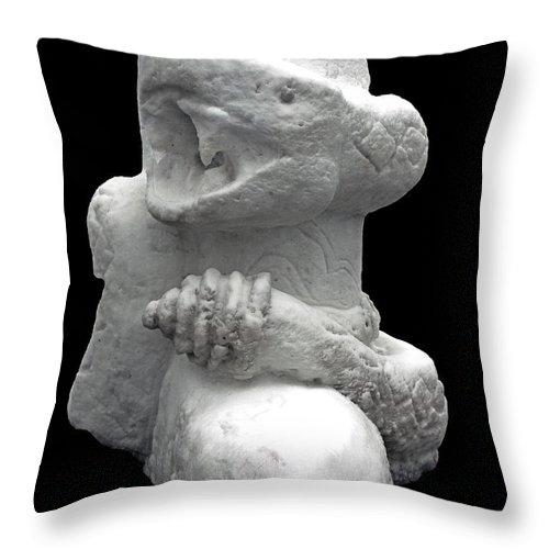 Usa Throw Pillow featuring the photograph Snow Serpent Nagini by LeeAnn McLaneGoetz McLaneGoetzStudioLLCcom