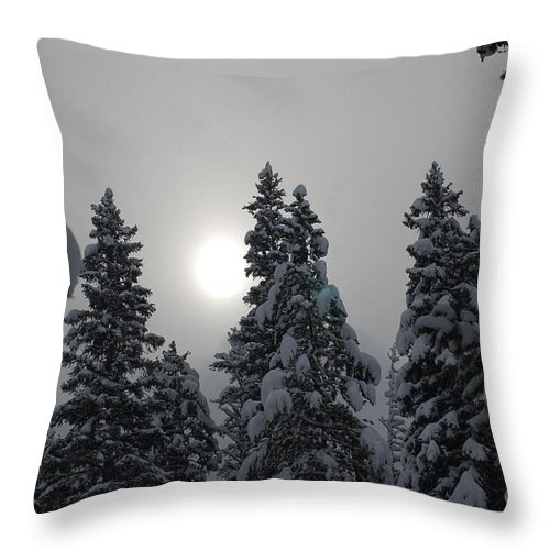 Snow Throw Pillow featuring the photograph Snow Sun by Lucy Bounds