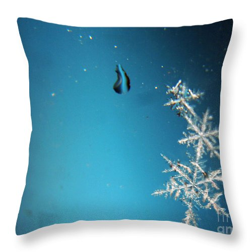 Snowflakes Throw Pillow featuring the photograph Snowflakes On My Window by Heather Applegate