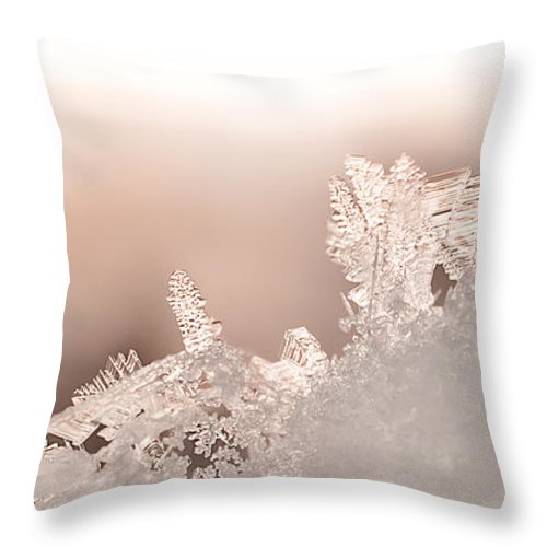 Snowflakes Throw Pillow featuring the photograph Snowland by Beth Riser