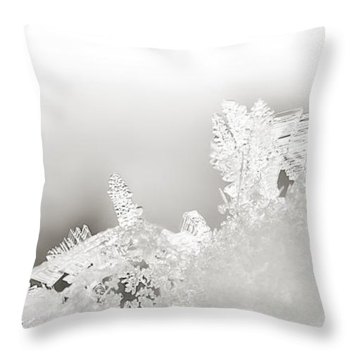 Snowflakes Throw Pillow featuring the photograph Snowland Bw by Beth Riser