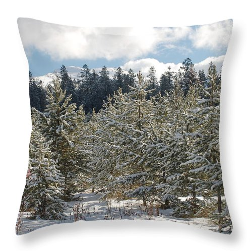 Snow Throw Pillow featuring the photograph Snowy Forest by Lucy Bounds
