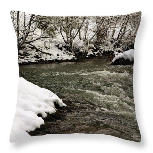 Snow Throw Pillow featuring the photograph Snowy Mountain River by Steve McKinzie