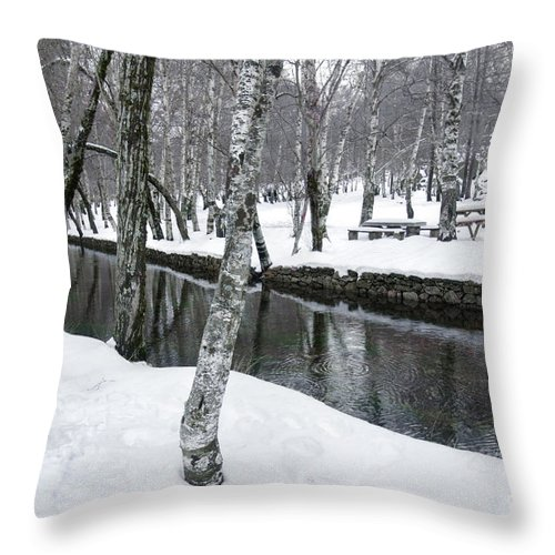 Alone Throw Pillow featuring the photograph Snowy Park by Carlos Caetano